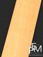 Дикая груша (Pyrus communis)